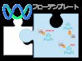 PlaPiとつながるフローテンプレートが登場!商品情報の一元管理をサポート
